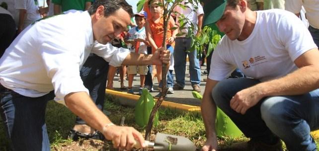 Cancun verde