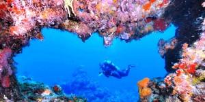 Repuntara actividad turística de Cozumel durante vacaciones decembrinas