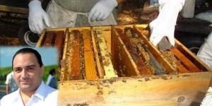 Anuncia el gobernador de Quintana Roo inversión de 19.3 millones de pesos al sector apícola 2014