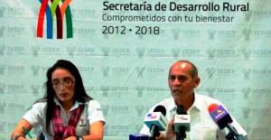 Más de 20 millones de pesos del gobierno de Yucatán en apoyo al sector pesquero en la veda del mero