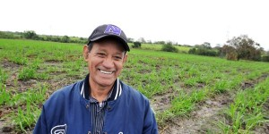 Reactivan en Veracruz 7 mil hectáreas con cultivos bioenergéticos
