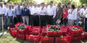 Con logros y resultados, el Gobierno de la República se está ganando la confianza de los michoacanos: Enrique Peña Nieto