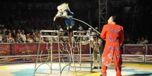 Magia y diversión en la Feria Tabasco con el Circo Internacional Stardust
