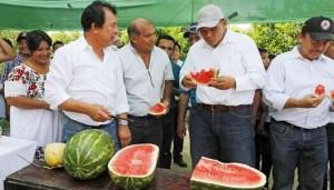 Constata Rolando Zapata Bello beneficios de carreteras saca cosechas en Yucatán