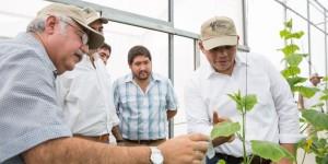 Gobernador de Yucatán visita invernadero Maya Vegetales del grupo La Anita