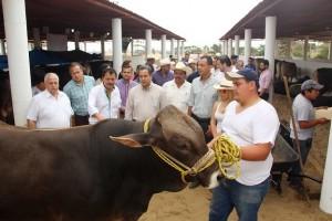 Un éxito la VIII Exposición Nacional de Ganado Suiz- Bú en Coatzacoalcos