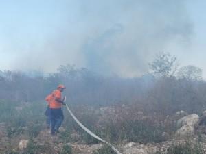 Combaten incendios forestales en Yucatán
