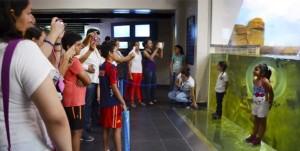 Repuntan visitas en Acuario de Veracruz por pingüinario