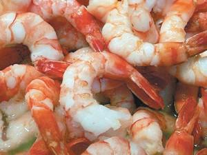 Veda para pescar camarón en el Golfo de México: SAGARPA