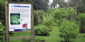 Jardín Botánico Francisco Javier Clavijero, espacio de conservación y difusión de la diversidad vegetal