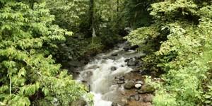 Impulsa SECTUR ecoturismo en la cuenca del río Pixquiac
