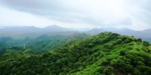Veracruz, líder en educación ambiental