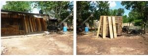 Asegura PROFEPA más de 100M3 de madera de Pino en Yucatán