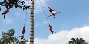 Ceremonia Ritual de Voladores y CAI, presentes en Brasil