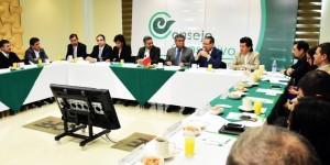 Energía eléctrica es progreso y desarrollo para Veracruz: SEGOB