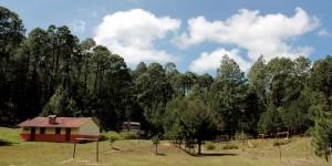 La SEDEMA te invita a visitar y cuidar las Áreas Naturales Protegidas de Veracruz