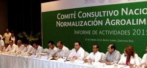 Asiste el gobernador con el titular de SAGARPA al Informe de actividades 2015 del CCNNA en Cancún