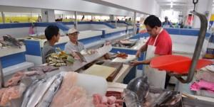 Visita el turismo el Mercado Hidalgo de Veracruz con más espacios: locatarios