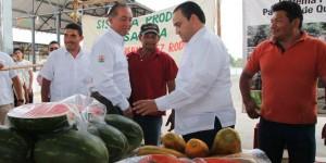 Inversión de 43 MDP para sectores Agropecuario y Pesquero antes que concluya 2016: Roberto Borge