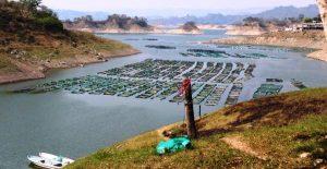 Gobierno de Chiapas da respuesta a pescadores de Mezcalapa