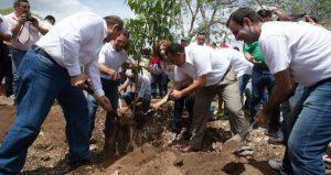 En el Día Mundial del Medio Ambiente, reforestan el Paseo Verde en Yucatán