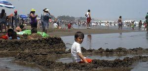 Aptas, playas de Veracruz para los bañistas: Secretaría de Salud