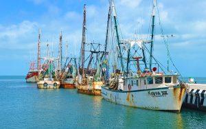 Listos Barcos camaroneros en Campeche para iniciar temporada de captura: CANAINPES