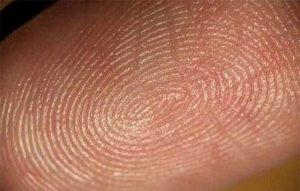 Las huellas dactilares irremplazables e irrepetibles, son únicas