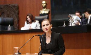 Pide Senadora Sonia Rocha a SHCP no recortar presupuesto para desarrollo de pueblos indígenas