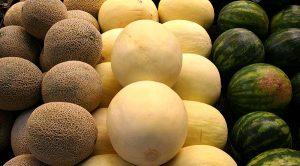 Alcanzan exportaciones de melón, sandía y papaya 283 millones de dólares