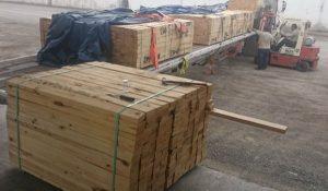Impide PROFEPA en Tamaulipas entrada de madera con plaga procedente de Estados Unidos