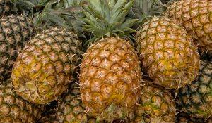 Se afianza México dentro de los 10 productores mundiales de piña