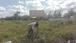 Clausura PROFEPA dos predios en Yucatán por cambio de uso de suelo Costero sin autorización