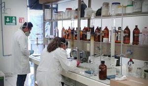 La Jamaica más efectiva que el cloro para matar bacterias: UAEH
