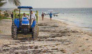 Prepara Puerto Morelos intensa jornada de limpieza de playas