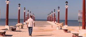 Redescubre Yucatán, a través de su naturaleza