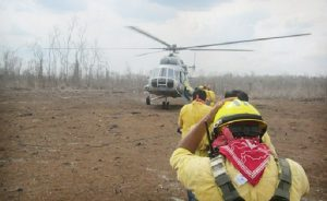 Controlan cinco incendios forestales en Campeche: CONAFOR