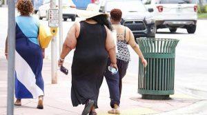 La obesidad es causante de hígado graso