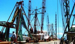 Verifica PROFEPA DET instalados en embarcaciones camaroneras de Quintana Roo