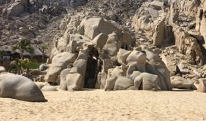Verifica PROFEPA retiró de cabañas del hotel Solmar en los Cabos, Baja California Sur