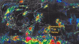 Harvey se degenera a Onda Tropical, aunque los remanentes del sistema se mantienen en monitoreo