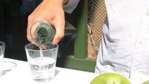 Bebidas mexicanas con Denominación de Origen