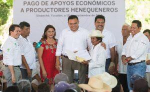 Siembra de henequén, con futuro garantizado en Yucatán