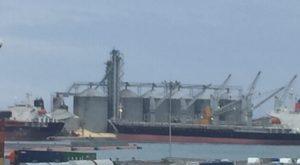 Se desploma bodega de granos en zona portuaria de Veracruz