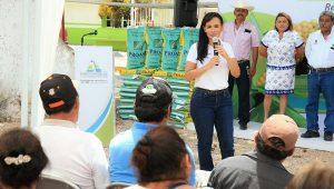 Potencia gobierno de Puerto Morelos desarrollo del campo