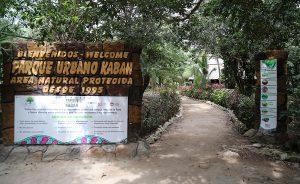Celebra Parque Kabah 22 Aniversario de decreto como área natural protegida en Cancún
