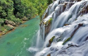 Montes Azules, una de las zonas con mayor diversidad genética de México