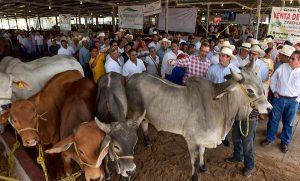 Alejandro Moreno Cárdenas, anuncia el fortalecimiento de apoyos para el sector ganadero
