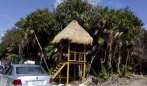 Clausura PROFEPA obras y actividades por cambio de uso de suelo en predio de Cancún
