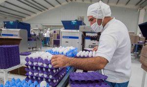 Incremento de empleo al sector primario apuntala el desarrollo del campo nacional: SAGARPA